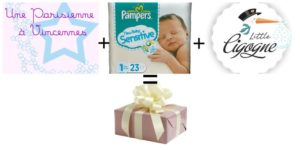 Pampers-little-cigogne-parisienne-a-vincennes