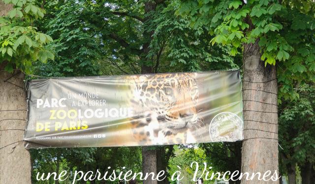 zoo de paris zoo de Vincennes